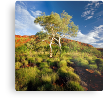 Colours of the Outback Metal Print