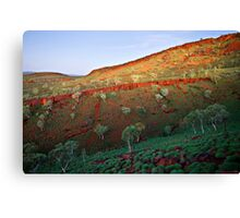 Dusk Ascending Canvas Print