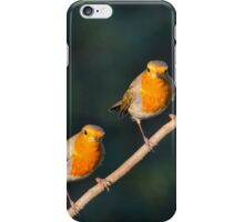 Mr & Mrs Robin Red Breast iPhone Case/Skin