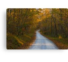 Fall Adventures Canvas Print