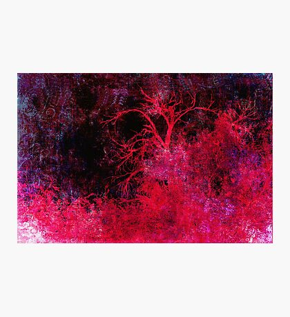 Red Night Down Photographic Print