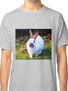Smudge Nose Rabbit.............Somerset UK Classic T-Shirt