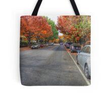 Fall In Washington DC Tote Bag
