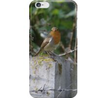 Robin and Barbed Wire iPhone Case/Skin