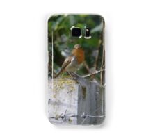 Robin and Barbed Wire Samsung Galaxy Case/Skin