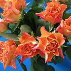 Rachael's Roses by SunriseRose