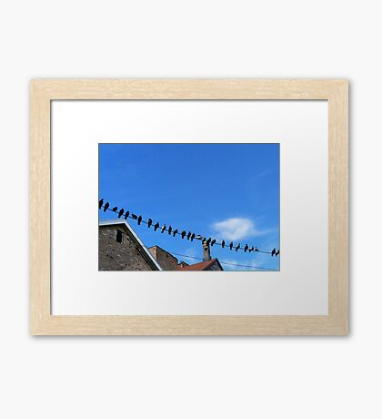 Birds on a Wire Photography Framed Print