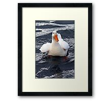 I'm Quackers! Framed Print