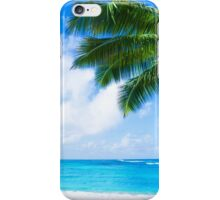 Coconut Palm tree on the sandy beach in Hawaii, Kauai iPhone Case/Skin