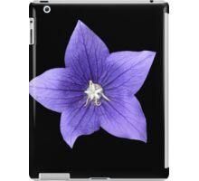 Pretty Little Purple Balloon Flower iPad Case/Skin