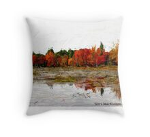 Fall in Northern Ontario Throw Pillow