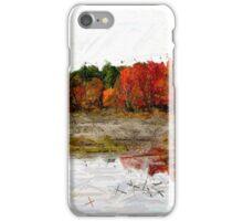Fall in Northern Ontario iPhone Case/Skin