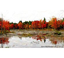 Fall in Northern Ontario Photographic Print
