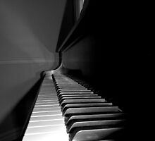 The Demure Charm of the Ivories    (1402118366VA) by photroen