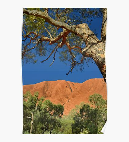 Northern Territory Landscape 32 Poster