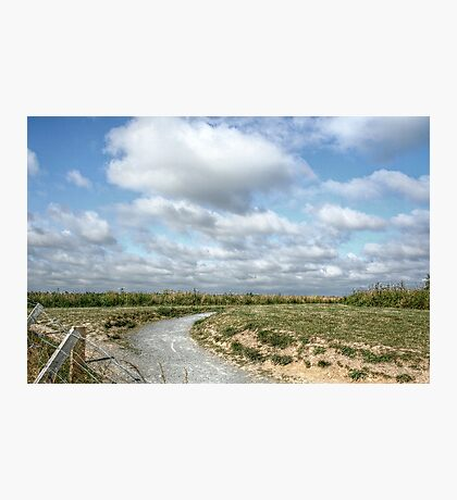 Beyond the Barbed Wire Fence Photographic Print