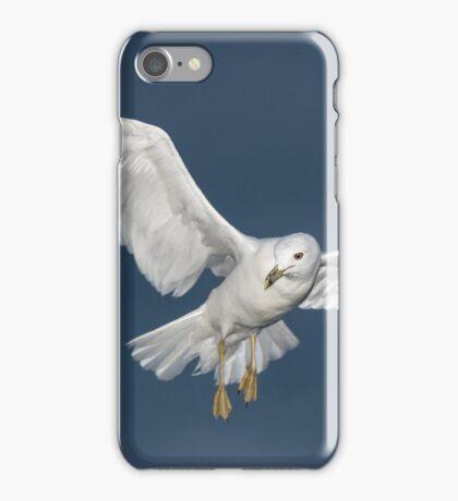 White Flying Seagull iPhone Case/Skin