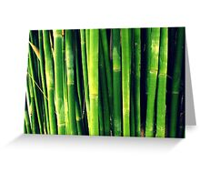 Big Bold Bellowing Bamboo Greeting Card