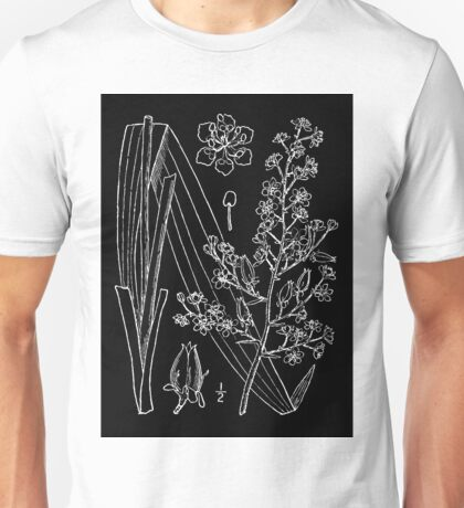 Britton And Brown Illustrated flora of the northern states and Canada 1571 Veratrum hybridum as Melanthium latifolium BB 1913 Unisex T-Shirt