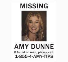 Amy Dunne Missing Poster by zorpzorp