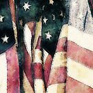 Vintage American Flags by morningdance