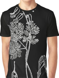 Britton And Brown Illustrated flora of the northern states and Canada 0540 Dicentra canadensis BB 1913 Graphic T-Shirt