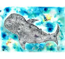 Whale be alright (in the blue) Photographic Print