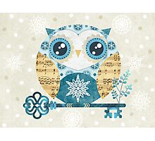 Winter Wonderland Owl Photographic Print