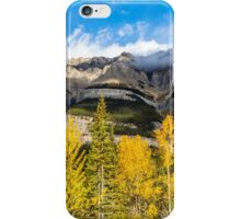Mount Wilson iPhone Case/Skin