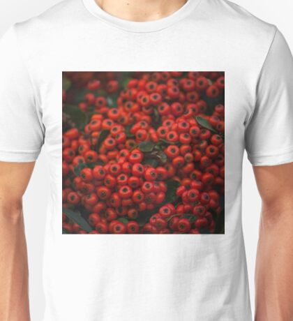 087 - Red Unisex T-Shirt
