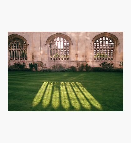 shadow and light Photographic Print