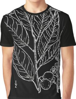Britton And Brown Illustrated flora of the northern states and Canada 1189 Prunus alleghaniensis drawing Graphic T-Shirt