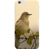 Cold November Rain iPhone Case/Skin