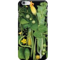 Colleen's First Pick iPhone Case/Skin