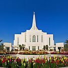 Gilbert Arizona Temple - Front Flowers 24x20 by Ken Fortie