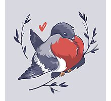 Red Heart Bird Photographic Print