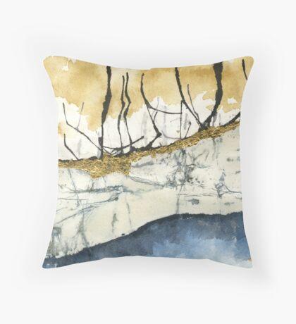 Aquafer Throw Pillow