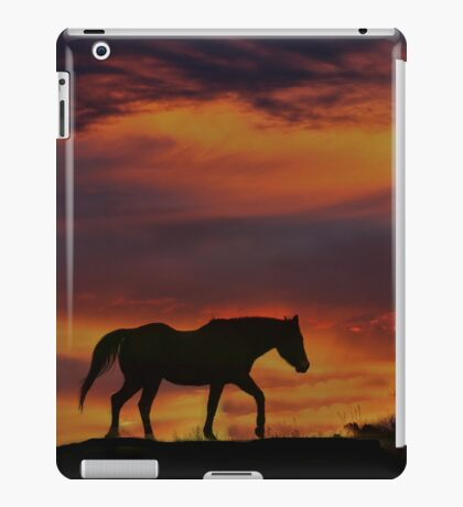 Sunset Colors with Arabian Silhouette iPad Case/Skin