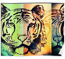 Jungle Kitty Cat Poster