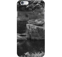 Eagles Nest - Warburton iPhone Case/Skin