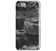 Eagles Nest - Warburton iPhone Case/Skin