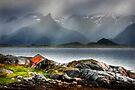 Abandoned Fisherman's Hut. Lofoten Islands. Norway. by photosecosse /barbara jones