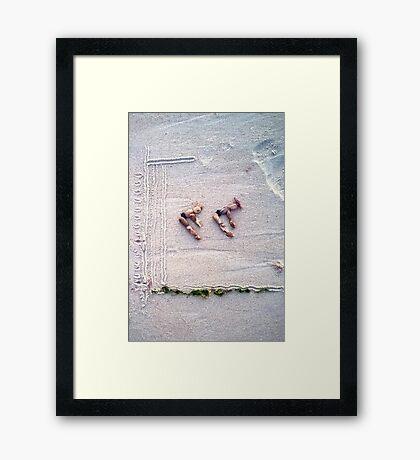 Dive II Framed Print