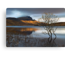 Old Man Of Storr. Sunrise. Trotternish. Isle of Skye. Scotland. Canvas Print