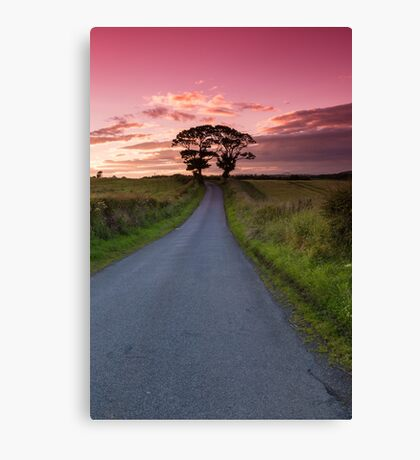 The Kissing Trees Canvas Print