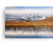 Blaven, Reeds and Snow. Isle of Skye. Scotland. Metal Print