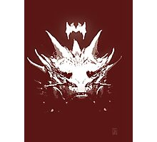 King Under the Mountain - Team Smaug Photographic Print
