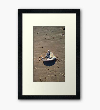 Sailing III Framed Print