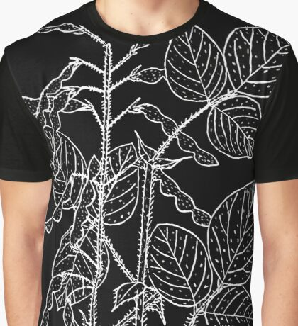 Britton And Brown Illustrated flora of the northern states and Canada 0527 Desmodium canescens BB 1913 Graphic T-Shirt