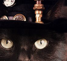 Steampunk Funny Cute Cat Sticker